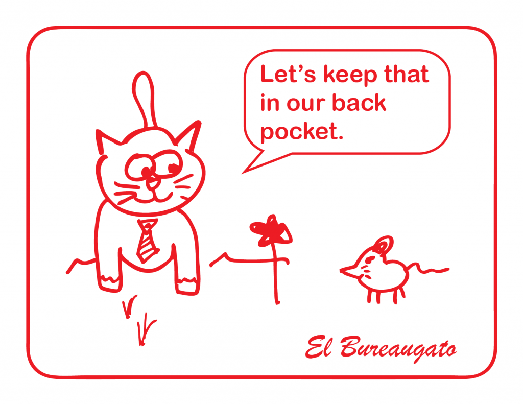 """El Bureaugato says, """"Let's keep that in our back pocket."""""""