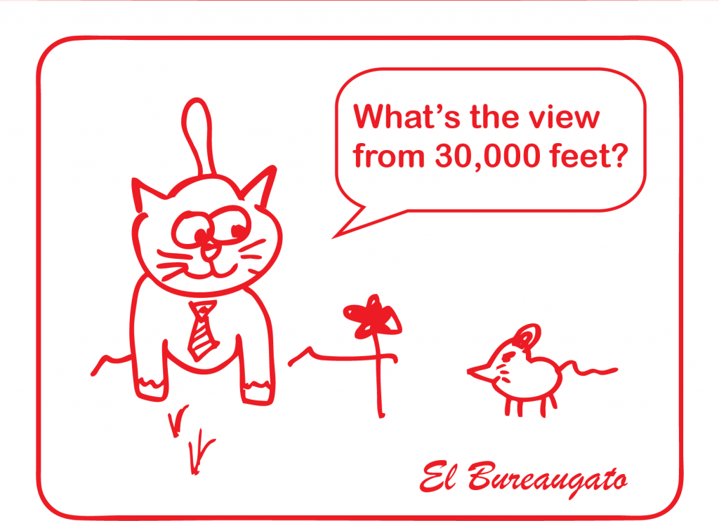 "El Bureaugato says, ""What's the view from 30,000 feet?"""