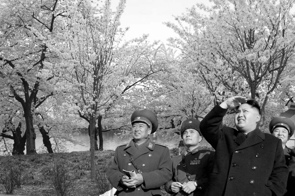 Cherry blossoms bloom with joy to be launched legitimately by the DPRK