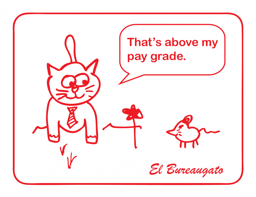 """El Bureaugato says, """"That's above my pay grade."""""""